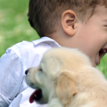 General Image - Puppy with Boy